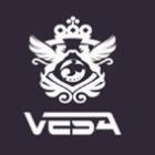 VESA酒吧