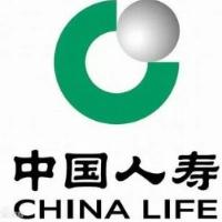 中国人寿保险公司东营分公司城区收展部
