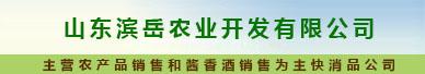 山东滨岳农业开发有限公司农副产品营销分公司