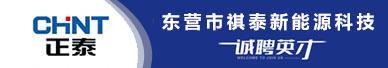 东营市祺泰新能源科技有限公司